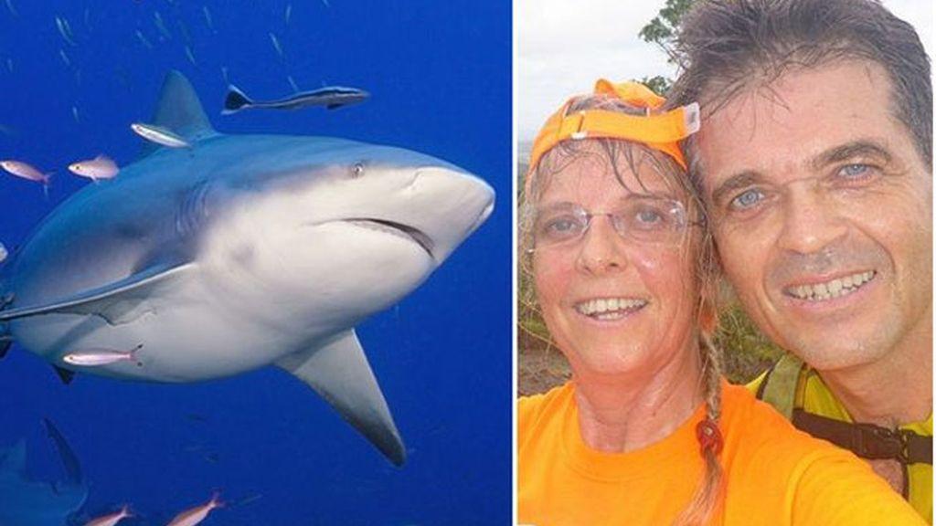 tiburón,ataque de tiburón,playa Nueva Caledonia,Yves Berthelot