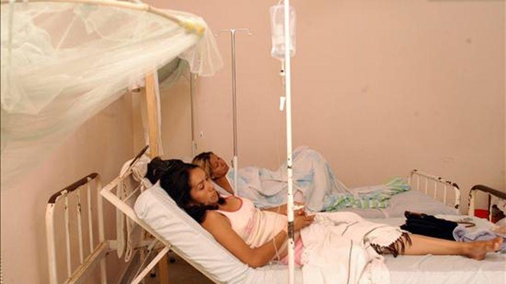 Desde enero pasado, el dengue se ha propagado por 18 de las 23 provincias argentinas en medio de duras críticas a las autoridades sanitarias por falta de previsión para frenar la enfermedad. EFE/Archivo
