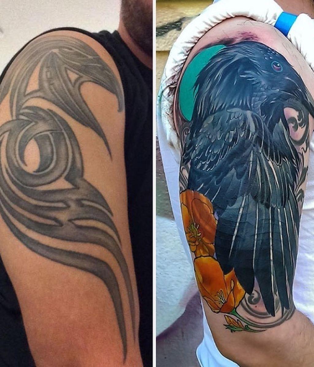 La evolución del ave