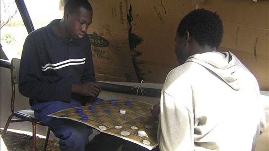 Dos jóvenes de Mali juegan a las damas en un asentamiento en Lepe, Huelva. EFE