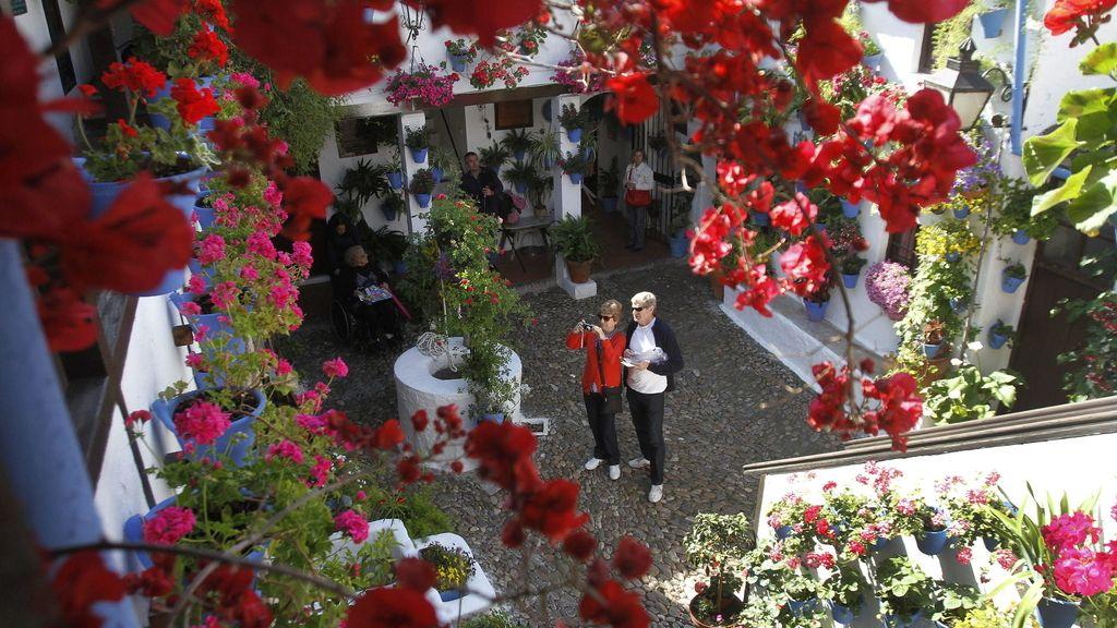 La Fiesta de los Patios de Córdoba, declarada Patrimonio Inmaterial de la Humanidad