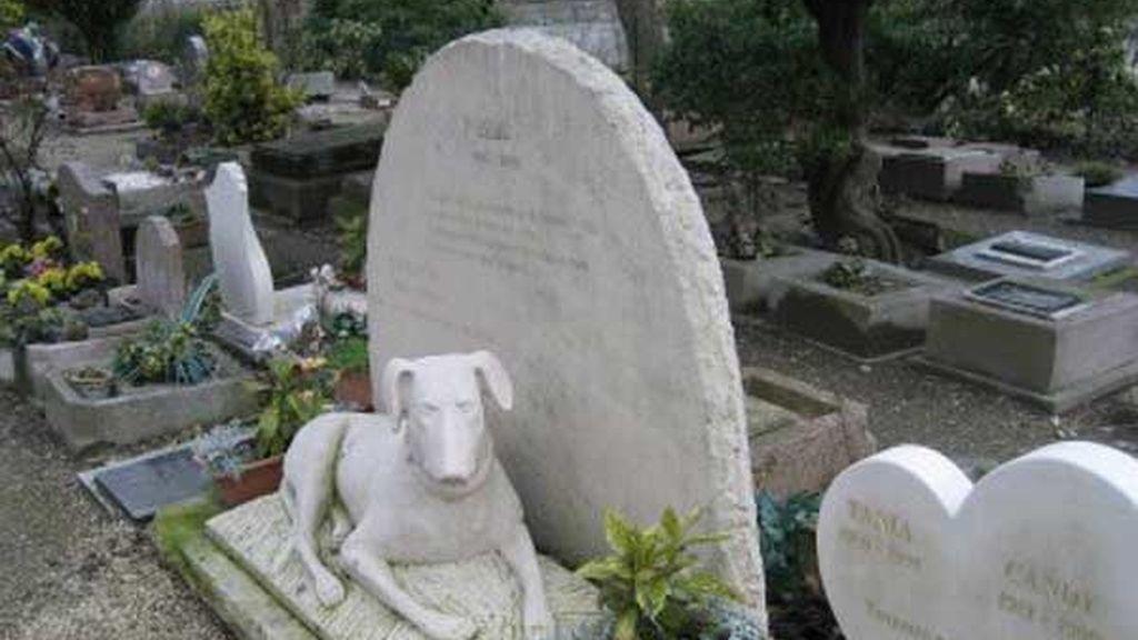 Cuidadora en cementerio de animales