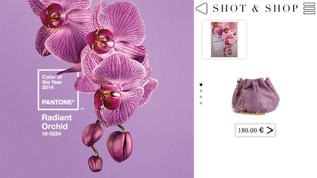Shot and Shop