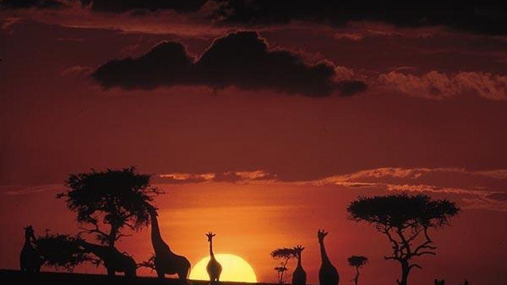 África dejará las mejores fotos del mundo