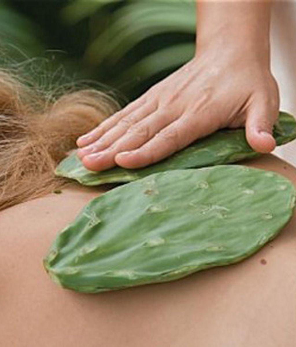 Masaje con hojas punzantes de cáctus
