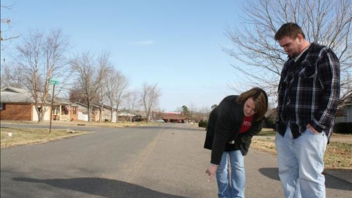 Imagen sin fechar facilitada por el diario Daily Citizen este 3 de enero de 2011 en la que se observa a dos residentes locales al examinar un mirlo muerto de los que se encuentran a lo largo de un barrio de Beebe, Arkansas (EEUU). EFE