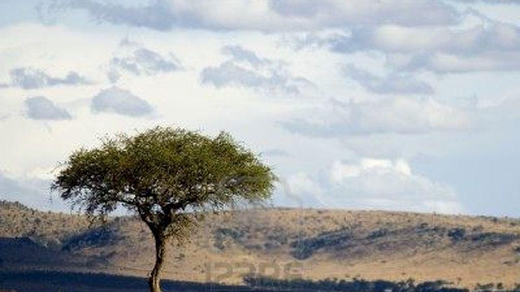 La tribu Masai acojerá a las parejas