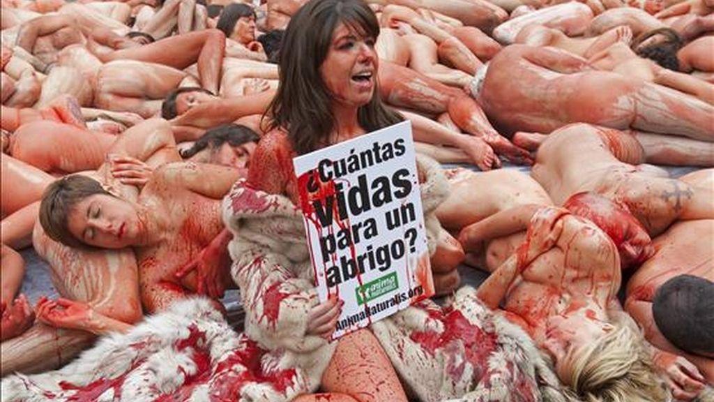 Cerca de un centenar de activistas se desnudaron y se derramaron pintura roja por encima en la plaza Sant Jaume de Barcelona para protestar contra la industria peletera y concienciar a los ciudadanos sobre el número de animales que son necesarios para confeccionar un sólo abrigo de piel. EFE