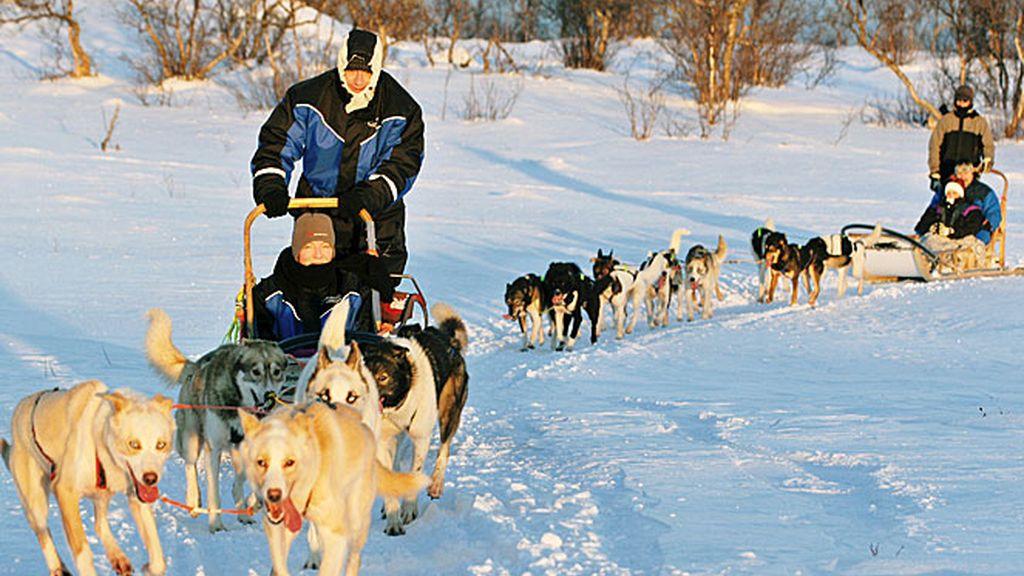 En trineo de perros por el Norte de Noruega