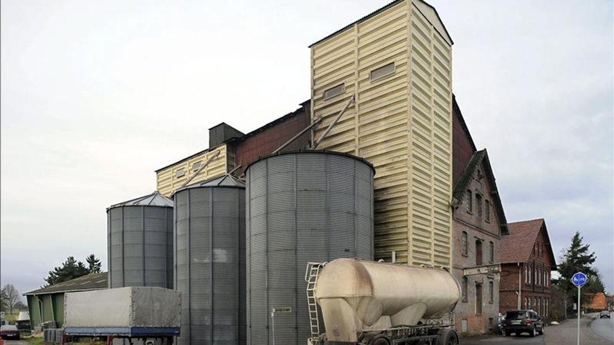 Vista general de la fábrica de pienso Rehbock en Langwedel, Alemania, donde 140 de sus 536 cerdos deben ser sacrificados y sus cuerpos incinerados por presentar altos niveles de dioxinas. EFE