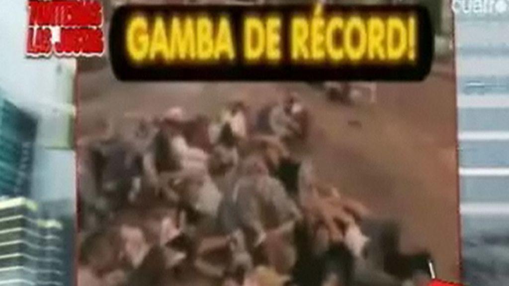 'Gamba' en Navarra: 100 personas