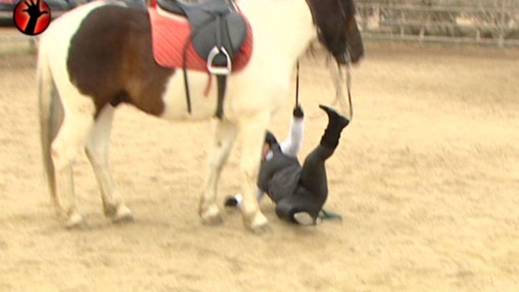 Se cae del animal pero no le puede el miedo y lo vuelve a intentar