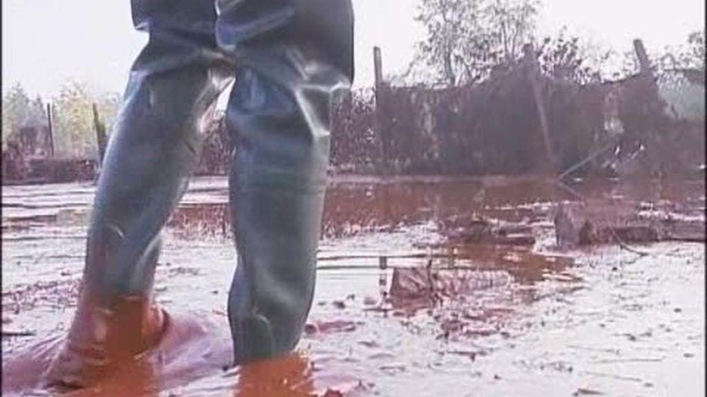 Devastación tras la marea tóxica en Hungría