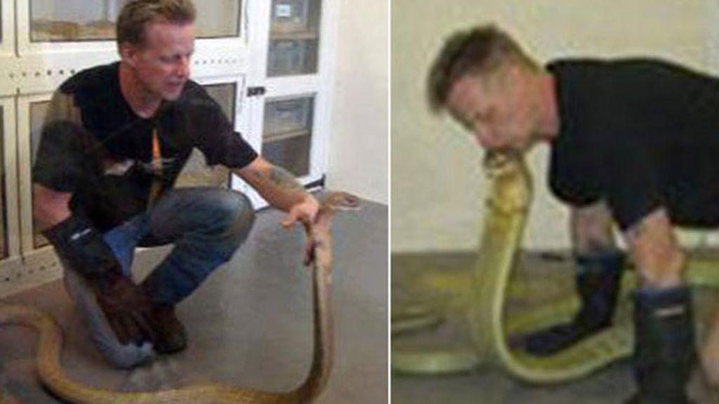 Luke Yeomans era todo un experto en cobras