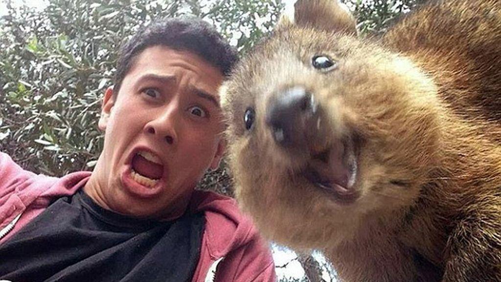 Una foto normal se convierte en una imagen increíble gracias a un 'intruso'