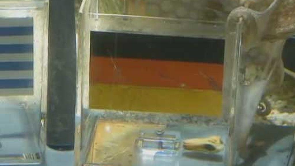en la urna de alemania