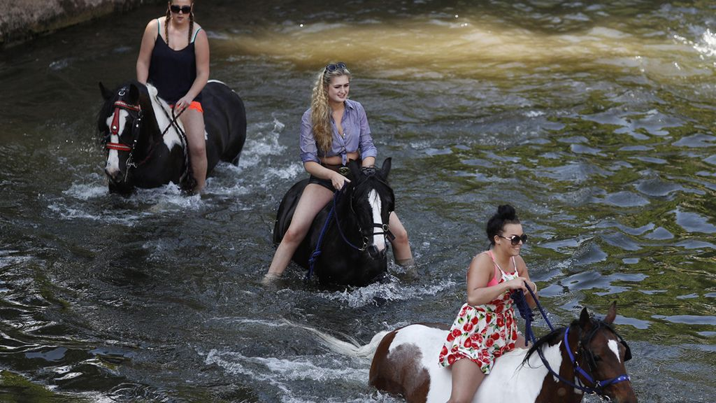 Baño de caballos