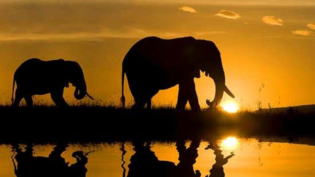 Pekín Express: aventura en África