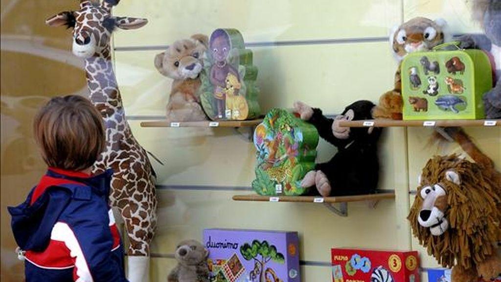 Un niño observa varios de los juguetes que se exponen en un escaparate de una tienda. EFE/Archivo