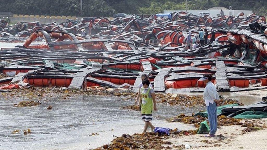 Más de 100.000 evacuados en China por la llegada de la tormenta Muifa