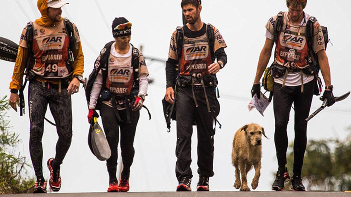 Un sueco adopta a un perro callejero en Ecuador tras una maratón