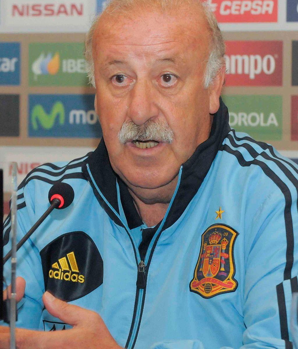 El seleccionador nacional, Vicente del Bosque