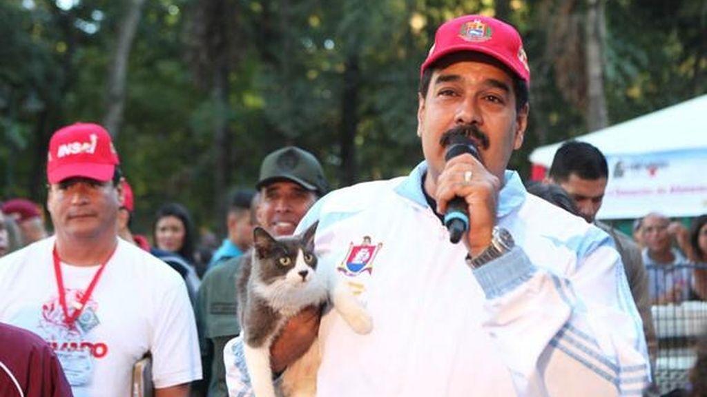 Nicolás Maduro adopta un gato tras poner en marcha un programa apra mascotas abandonadas