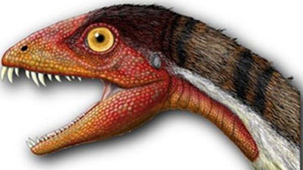La nueva especie se denomina 'Daemonosaurus chauliodus'. FOTO: JEFFREY MARTZ/SMITHSONIAN