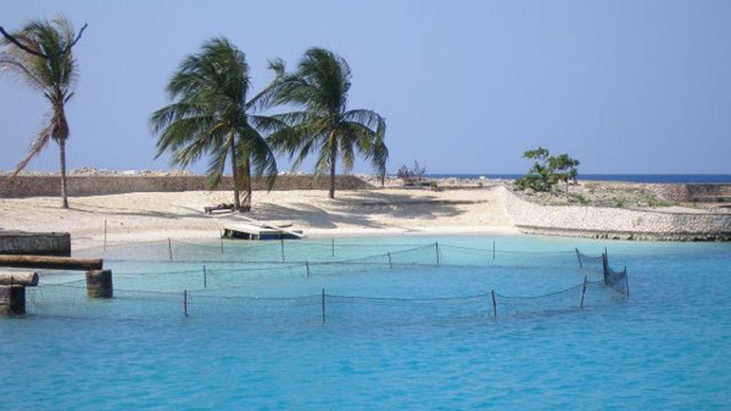 Playa Mallard, Jamaica