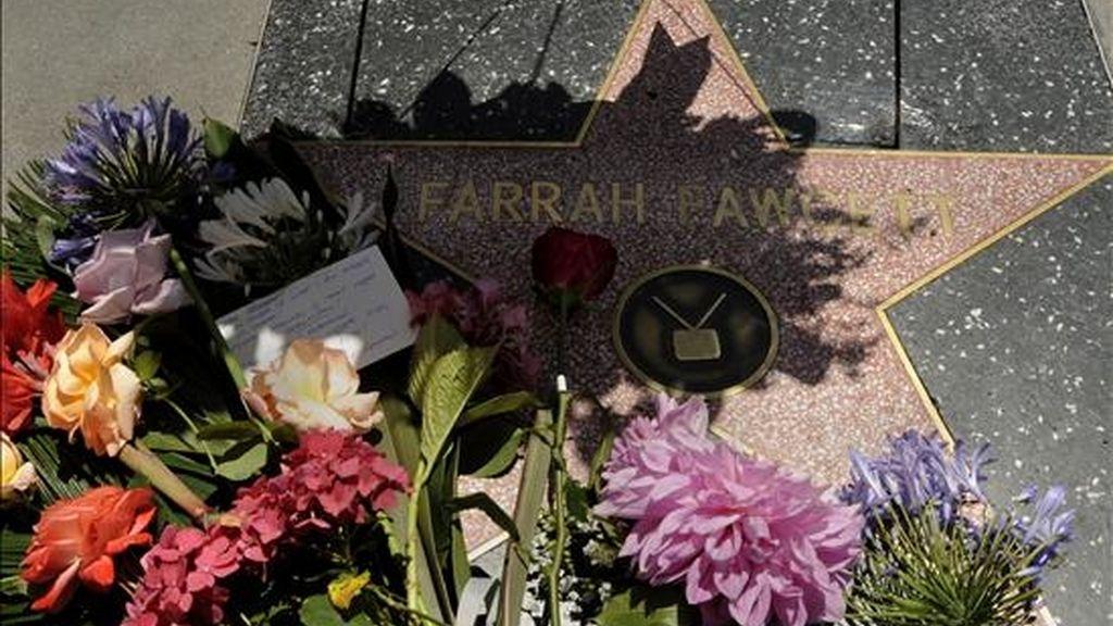 Un conjunto de flores adornan la estrella de la actriz estadounidense Farrah Fawcet en Hollywood Boulevard en Los Ángeles, quien falleció el pasado jueves a los 62 años de edad tras una larga lucha contra el cáncer. EFE