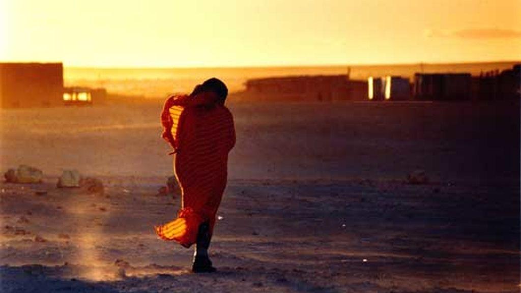 'El Rumor de la Arena' cuenta la historia del pueblo saharaui.