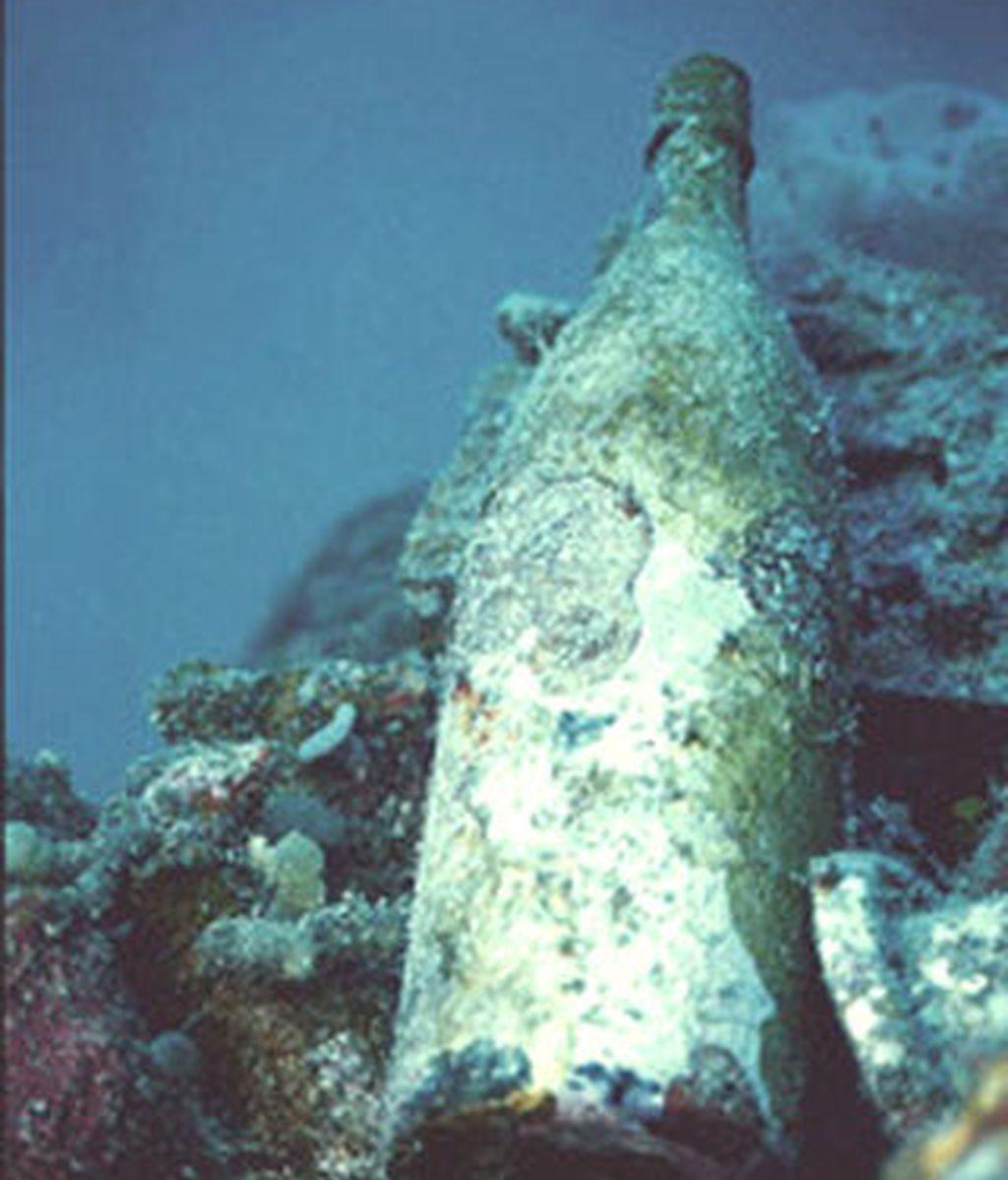 Imagen de una bitella hallada en el fondo del mar. Foto: BBC