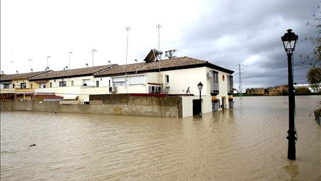 Algunas de las viviendas de Lora del Río (Sevilla) que han sido desalojadas hoy como consecuencia de la crecida del Guadalquivir debido a las ultimas lluvias. EFE