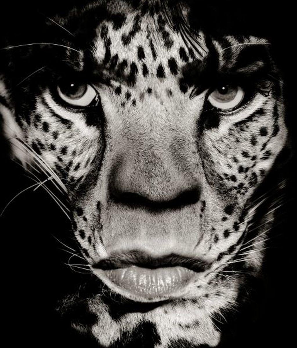 El cantante de los Rolling Stones, Mick Jagger, con un rostro felino