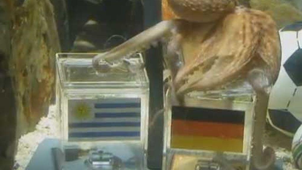 ¡alemania! ¡alemania!