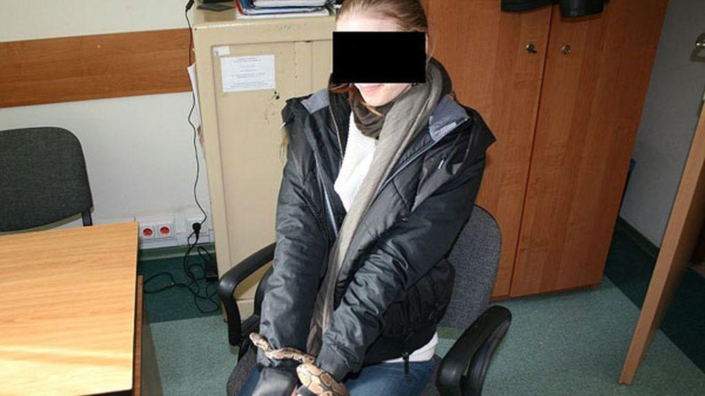 Una traficante que guardaba una pitón dentro de su blusa...