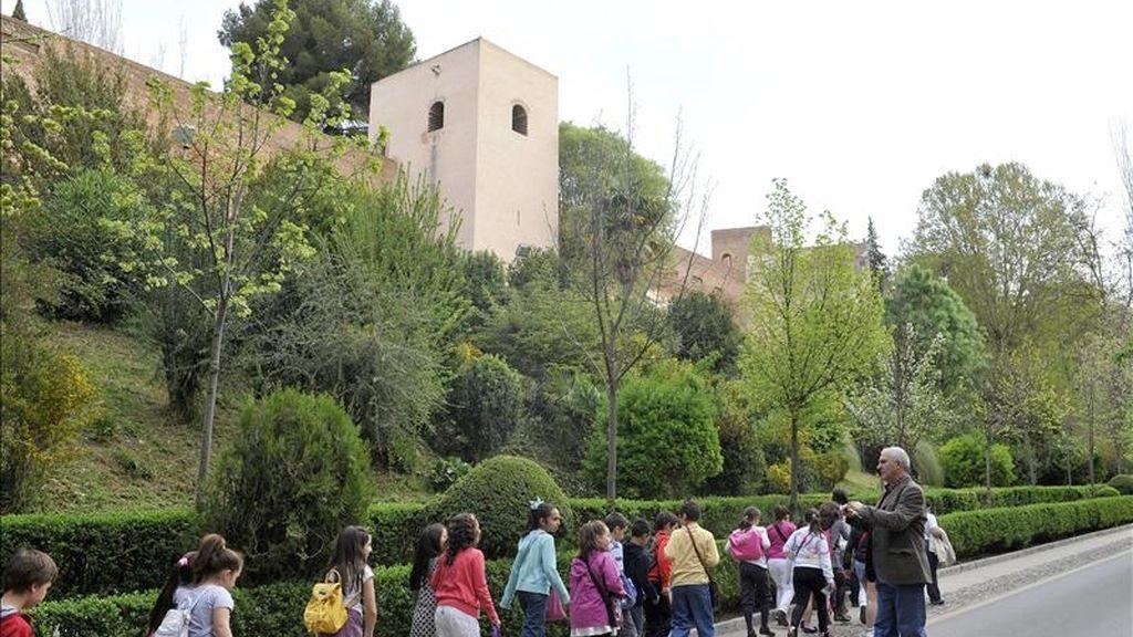 El bosque de la Alhambra, cuya imagen actual se ha ido configurando a lo largo de los siglos XIX y XX, está siendo sometido en los últimos años a un proceso de restauración de sus arboledas que busca diversificar este hábitat con la introducción de nuevas especies para hacerlo más sostenible. EFE