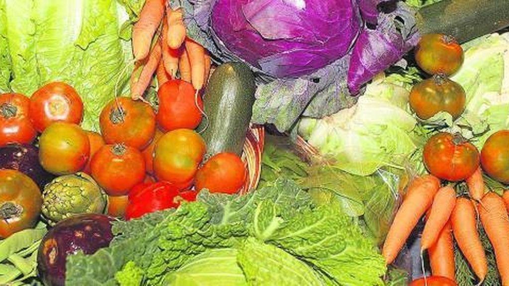 Los alimentos difíciles de masticar pueden adelgazar