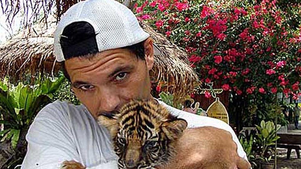 Las mascotas de Frank: el tigre