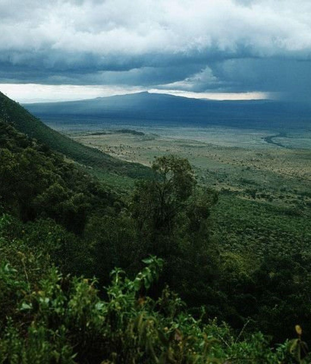 Rift Valley: el origen del Hombre