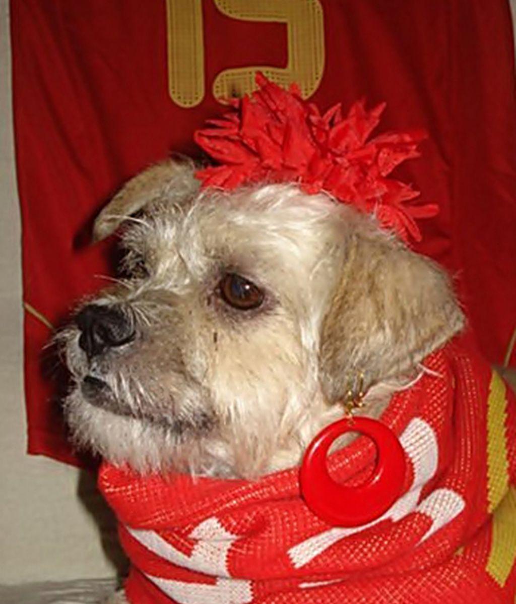 La mascota de Eva Jiménez