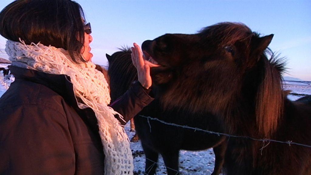 Las mejores fotos de una 'Boda en Islandia'
