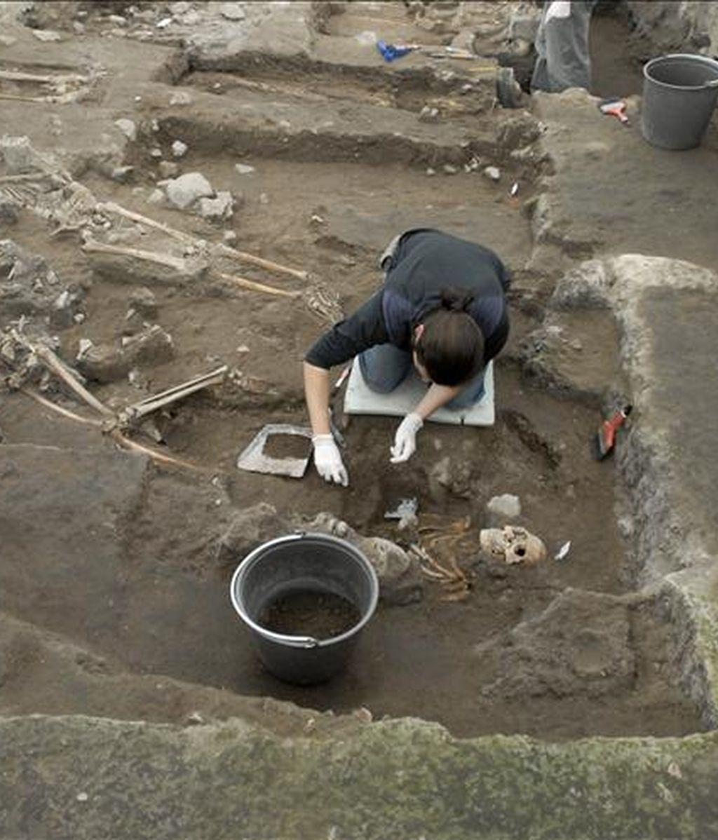 Los restos óseos fueron trasladados hasta las dependencias del Museo Arqueológico de La Serena. En la imagen, un especialista desentierra restos humanos en una zona arqueológica. EFE/Archivo