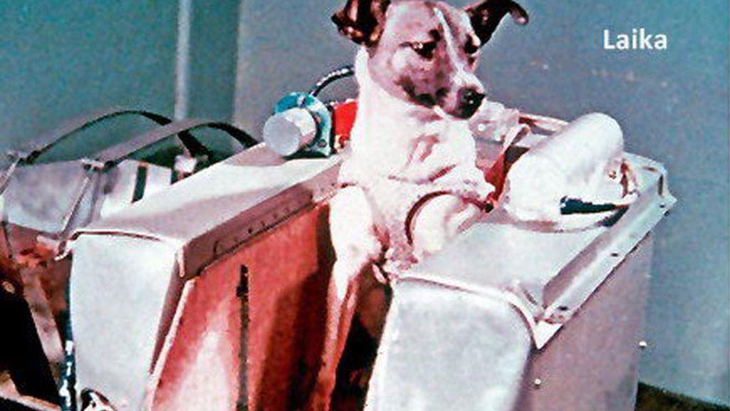 Laika, la perra astronauta