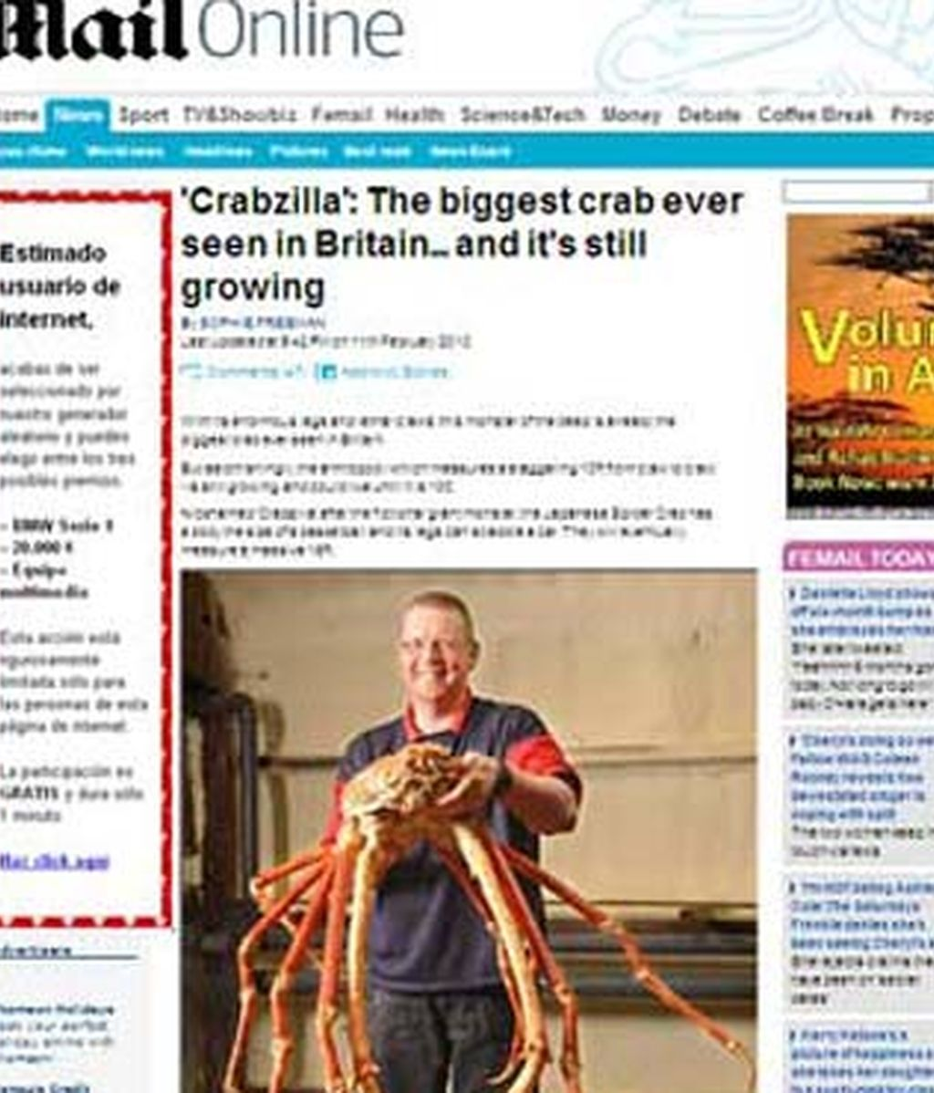"""""""Crabzilla"""" ha vivido desde febrero en un acuario de Reino Unido. Foto: Daily Mail"""