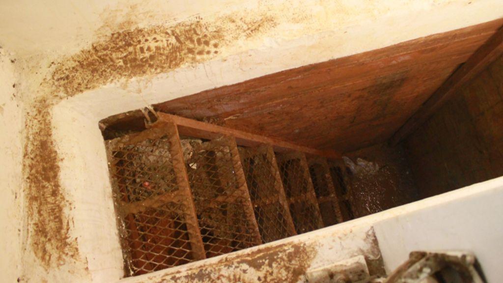 Así es el refugio donde se escondía el Chapo