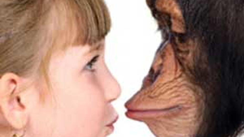 El lenguaje nos diferencia de los primates. Foto: Nature