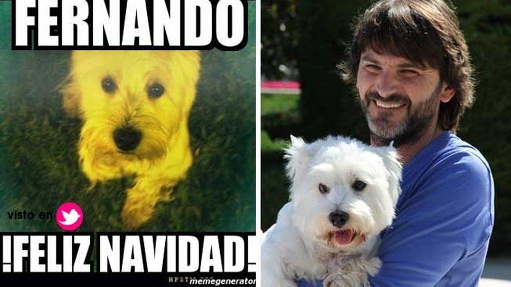 Fernando Tejero y su inseparable westy