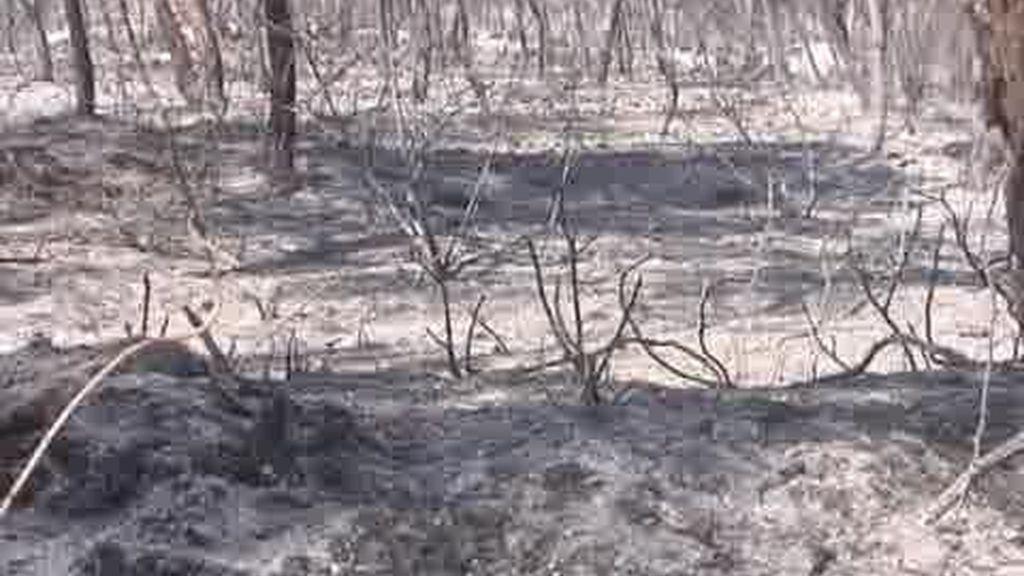 Daños económicos por el incendio en Benirrás
