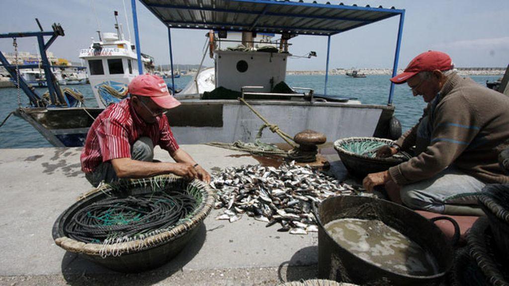 Pescadores en el puerto de la Atunara de La Línea de la Concepción (Cádiz), preparan sus artes para salir a faenar en aguas próximas a Gibralta